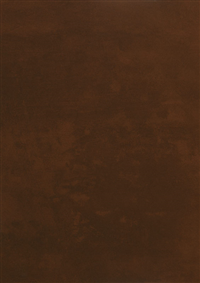0028 Prado Brown
